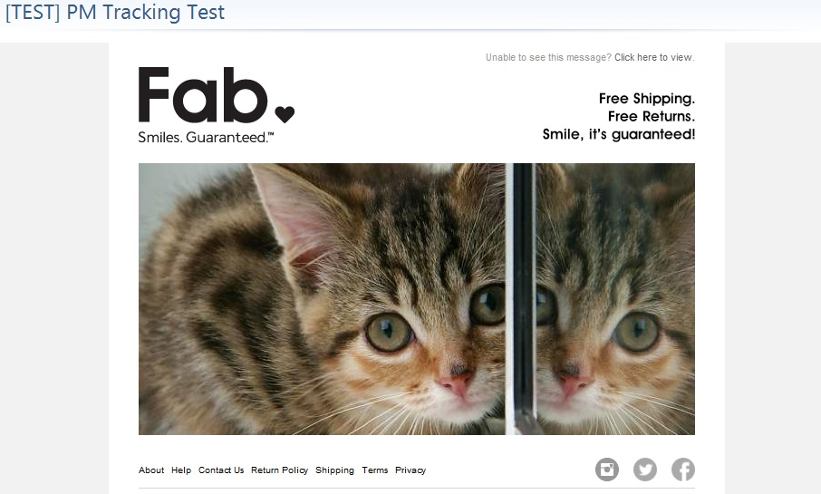 cats in email